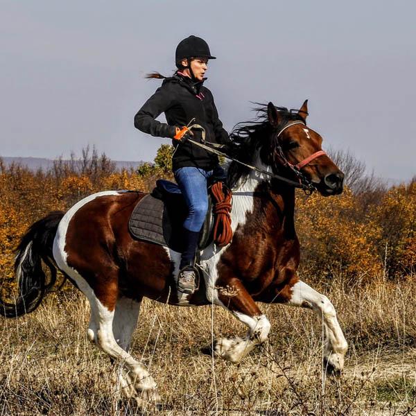 Abbigliamento equitazione donna