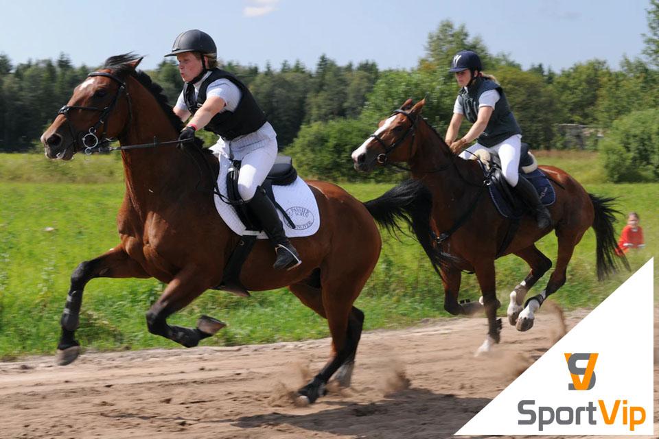 Abbigliamento da equitazione e articoli per cavalli